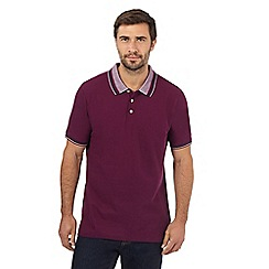 Maine New England - Big and tall purple jacquard polo shirt