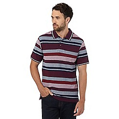 Maine New England - Maroon birdseye striped polo shirt