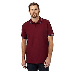 Maine New England - Big and tall maroon twin tipped polo shirt