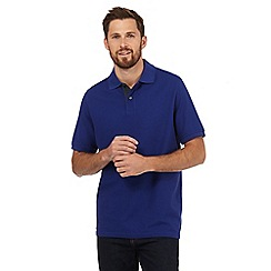 Maine New England - Royal blue contrast placket polo shirt