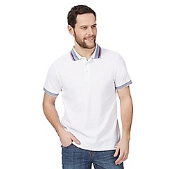 Maine New England - Big and tall white tipped polo shirt
