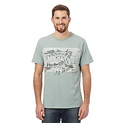 Mantaray - Big and tall light green snow mountain t-shirt