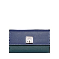 Fiorelli - Chiltern turnlock dropdown purse