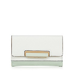 J by Jasper Conran - Light green colour block medium purse