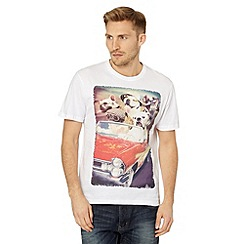 St George by Duffer - White dogs in a car print t-shirt