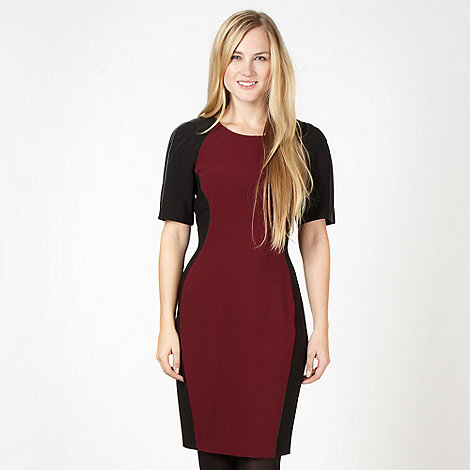 Red Herring - Wine panel bodycon dress
