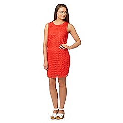Red Herring - Coral sleeveless crochet shift dress