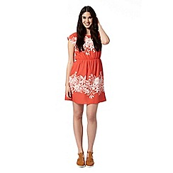 Red Herring - Peach floral border dress