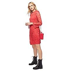 Red Herring - Peach lace high neck dress