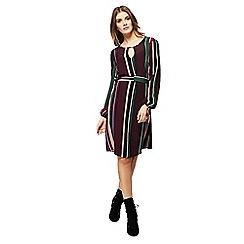 Red Herring - Multi-coloured striped long sleeve knee length dress