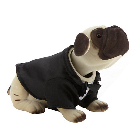 Debenhams - Mr. Fantastic desktop nodding dog with tux