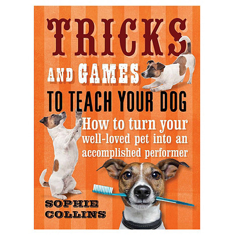 Penguin - Tricks and Games to Teach Your Dog: How to Turn Your Much-Loved Pet into an Accomplished Performer B