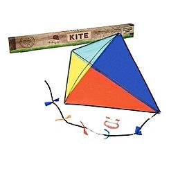 Professor Puzzle - Kite