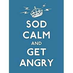 Penguin - Sod Calm and Get Angry book