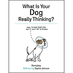 Penguin - What Is Your Dog Really Thinking?
