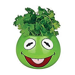 Debenhams - Kermit planter