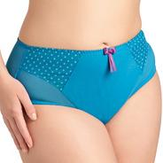 Turquoise Betty briefs