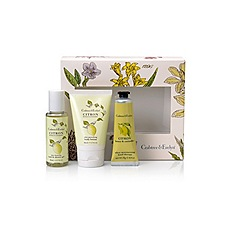 Crabtree & Evelyn - Citron, Honey & Coriander Little Luxuries Christmas Gift Set