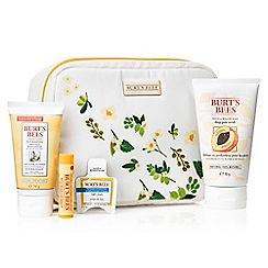 Burt's bees - 'Burt's Bag of Treats' Christmas gift set