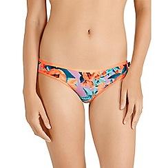 Bonds - Purple cotton leaf print bikini knickers
