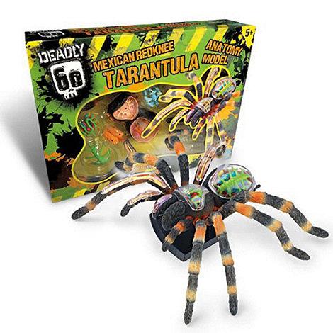 Deadly 60 - Tarantula 3D Model