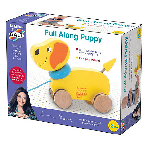 Galt - Dr Miriam Pull along puppy