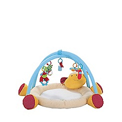 Early Learning Centre - Blossom Farmnuggle Playmat
