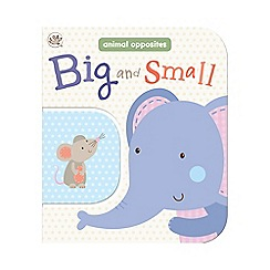 Little Learners - Big and small 2 in 1 board book
