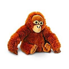 Keel - 30cm Orangutan cuddly toy