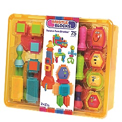 Bristle Blocks - Twist n turn bristles