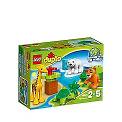 LEGO - Baby Animals - 10801