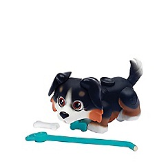 Flair - Pet Parade Single Puppy Pack - Bernese