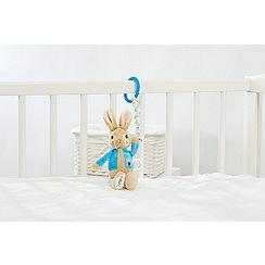 Beatrix Potter - Petrr Rabbit Pram Toy