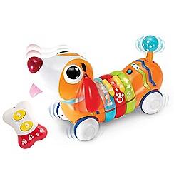 Debenhams - Remote Control Rainbow Pup