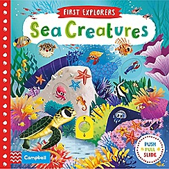 MacMillan books - Sea Creatures Book