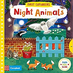 MacMillan books - Night Animals Plush and Slide Board Book