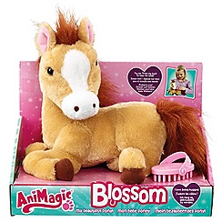 Early Learning Centre - Blossom My Beautiful Pony
