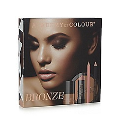 Academy of Colour - Bronze Box Set