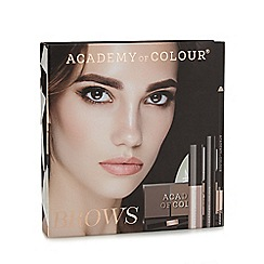 Academy of Colour - Brows Box Set