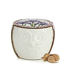 At home with Ashley Thomas - White ceramic indoor plant and owl plant pot