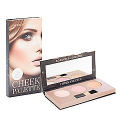 Academy of Colour - Cheek palette