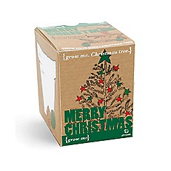 Gift Republic - Grow me merry christmas