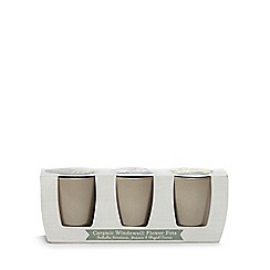 Wilson and Bloom - Set of three gold ceramic windowsill flower pots