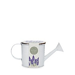 Wilson and Bloom - White watering can Muscari indoor planter
