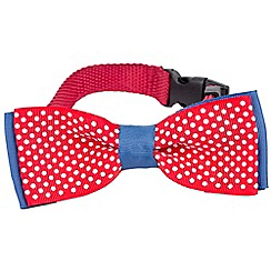 Debenhams - Dog Dress Up Pet Bow Tie