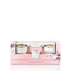 Baylis & Harding - Pink Magnolia & Pear Blossom 3 Candle Set