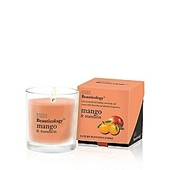 Baylis & Harding - Beauticology Mango & Mandarin Single Wick Candle