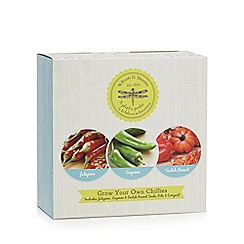 Wilson and Bloom - Grow Your Own Chillies kit