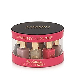 Academy of Colour - Ultimate nails polish set