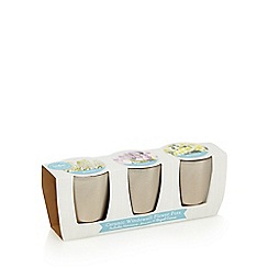 Wilson and Bloom - Pack of three ceramic windowsill flower pots
